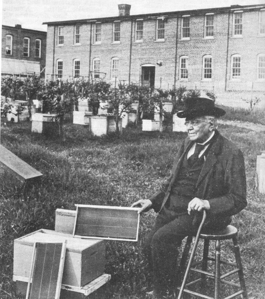 آقای لانگستروت مخترع کندوی لانگستروت