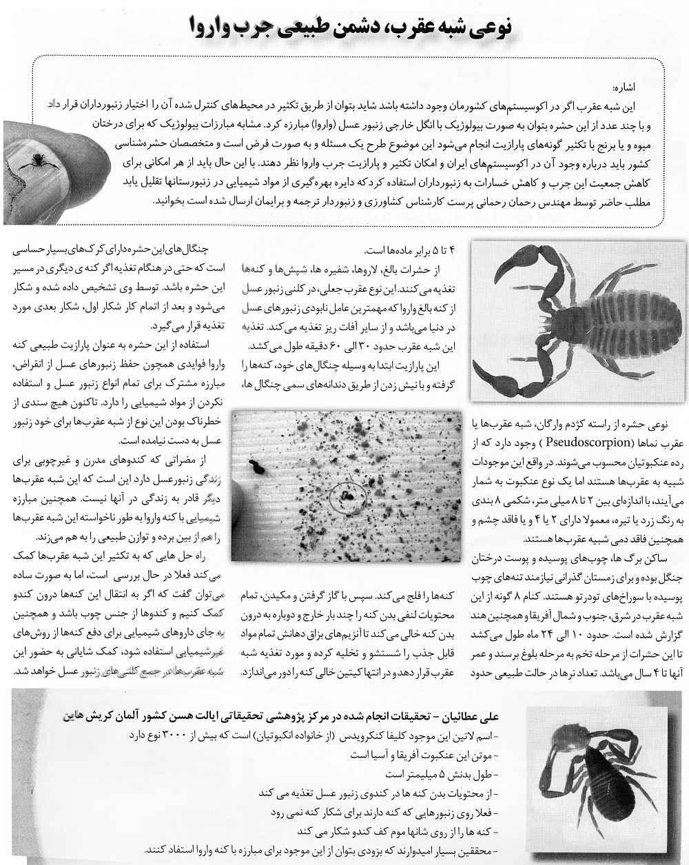 بازتاب این مطلب در مجله صنعت زنبورداری ایران