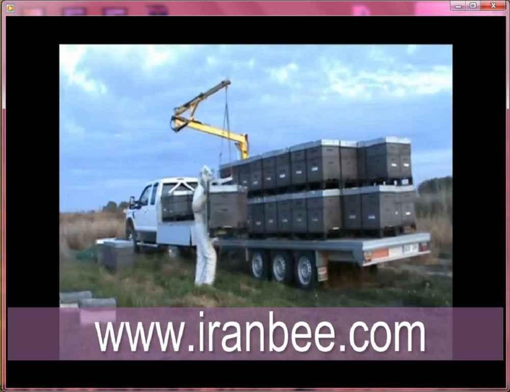 دانلود فیلم حمل کندوهای زنبور عسل با دستگاه مخصوص