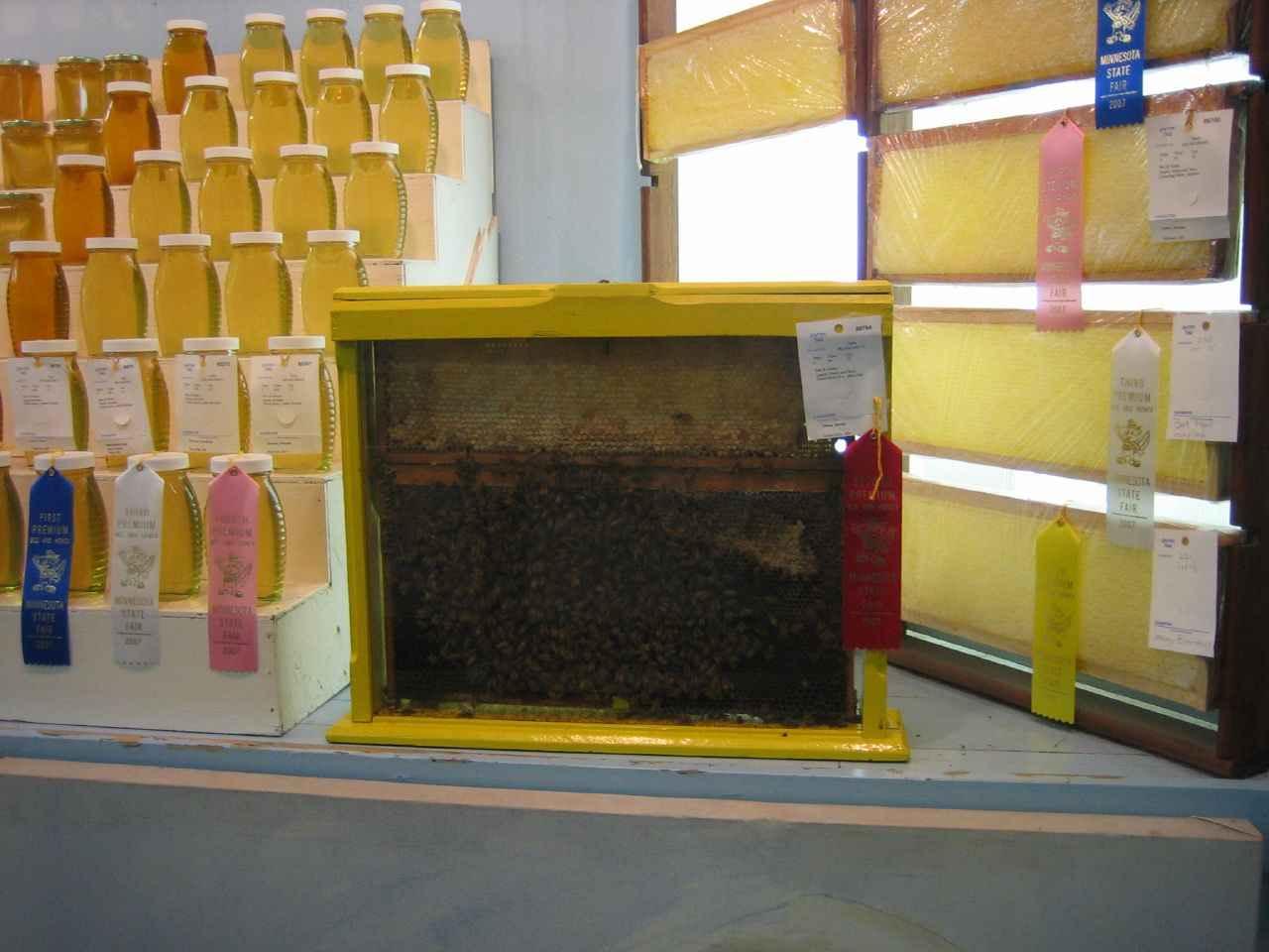 رنگ ها و بسته بندی های مختلف عسل