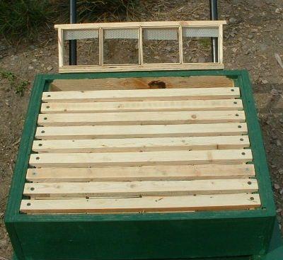 روش تولید انواع عسل شان-13