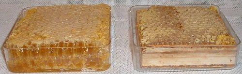 روش تولید انواع عسل شان-18