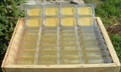 روش تولید انواع عسل شان-26