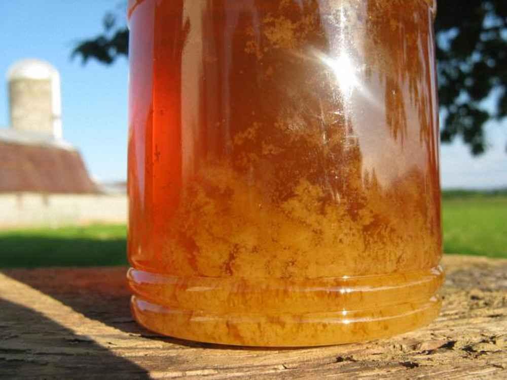 عسل شکرک زده در حال ذوب