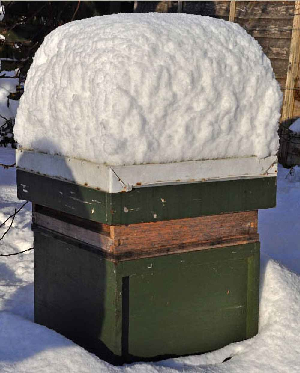 کندوی زنبور عسل در زمستان